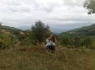 suva_planina